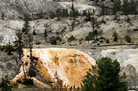 Mammoth hot springs from a distance
