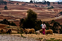 sacred valley-0516