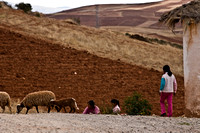 sacred valley-0522