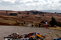 sacred valley-0514
