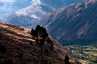 sacred valley-0518